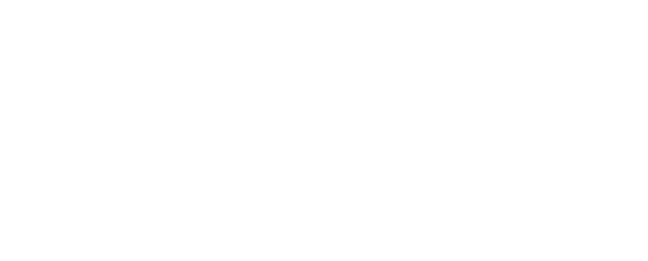 Metro State University Institute for Professional Development